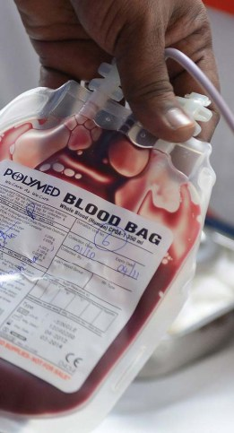 gay men can donate blood